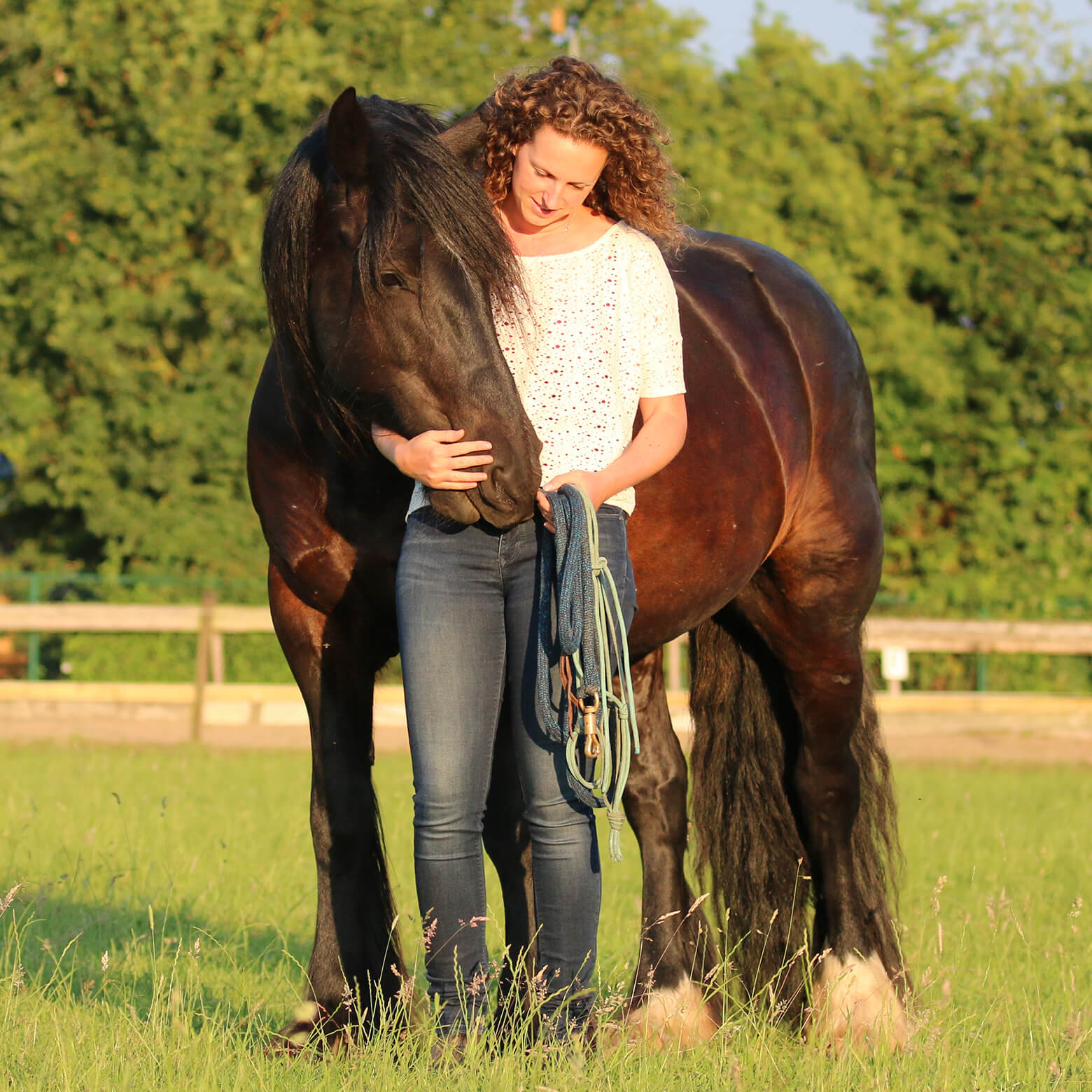 CC1_0008_paardencoaching